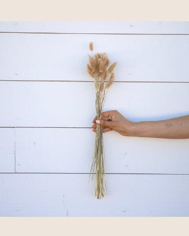 Mariage - BUNNY TAILS Dried Grass Natural