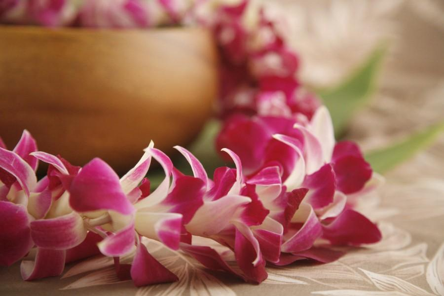 "Hochzeit - Fresh Lei ""Orchid Lei"" from Hawaii! - Hawaiian Lei - Choose Your Delivery Date! - Fresh Flower Lei Hawaiian Weddings Graduation Luau Tiki"