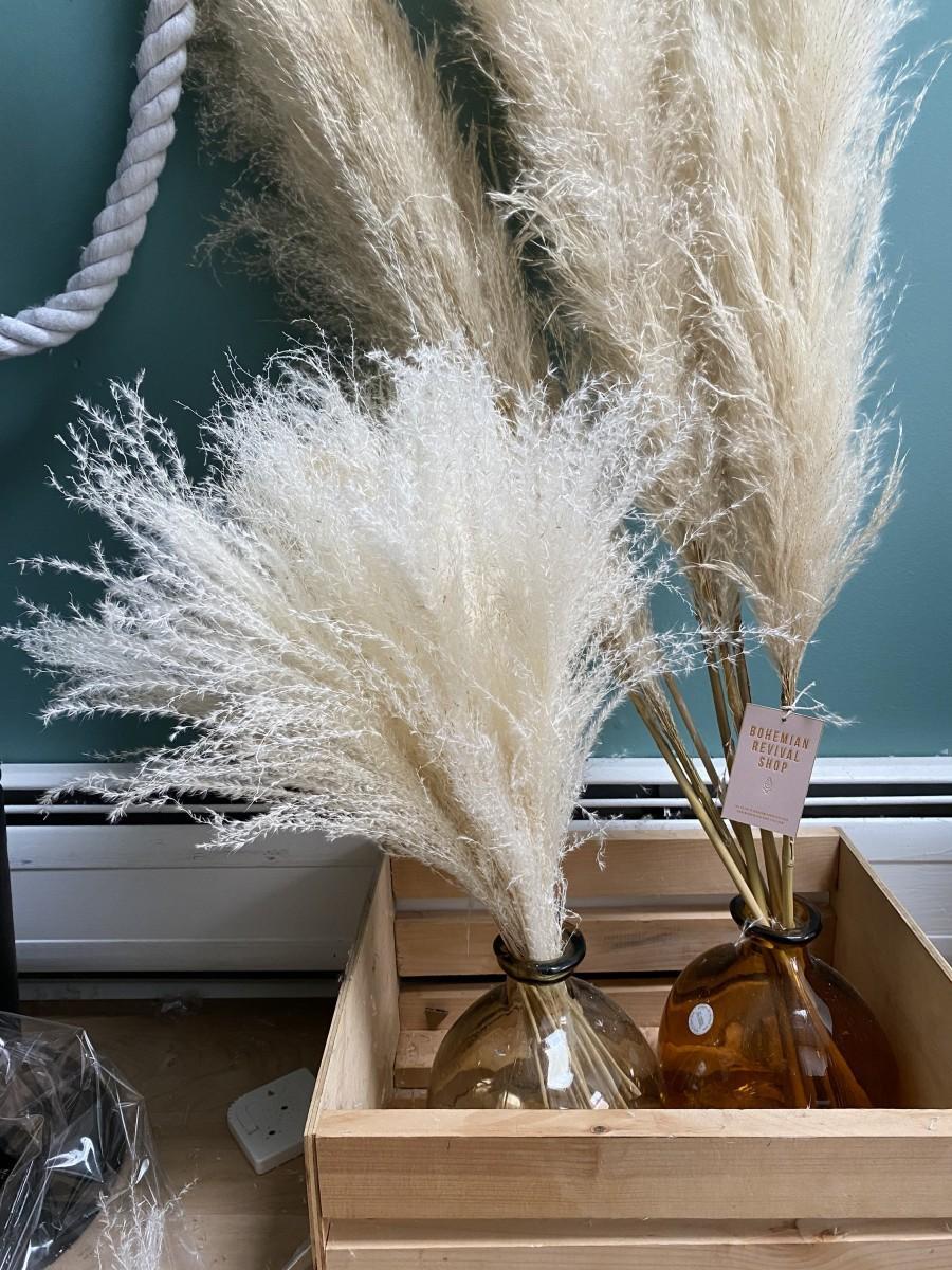 Wedding - Pampas Grass Bouquet (20 Stems) / Small Ivory Pampas Grass / Pampas Grass Bouquet / White Pampas Grass / Wedding Bouquet