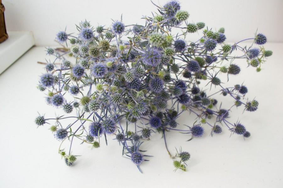 Свадьба - Dry bouquet of thistle blue, thistles, dried flowers, wedding decor, phytomaterial, vase filler, acoustics