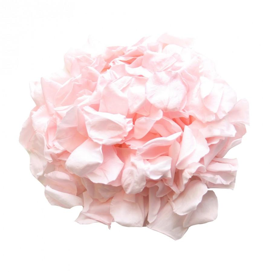 Wedding - Pale pink rose petals for wedding confetti / decoration.  Pale pink preserved rose petals, biodegradable