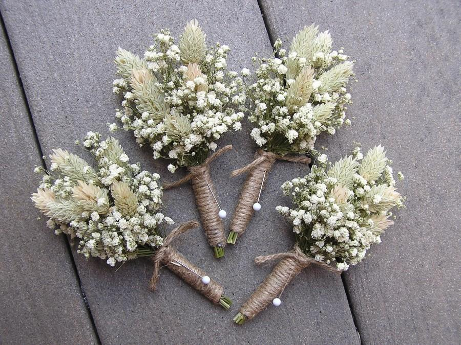 Hochzeit - Dried Baby's Breath and Phalaries Boutonnieres, White Wedding Boutonniere, Mans Buttonhole, Boutonniere for Groomsman, Groom Boutonniere