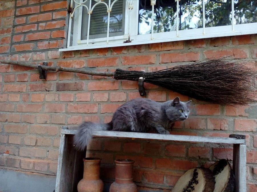 Wedding - Natural Witch Broom, Halloween Pagan broom besom