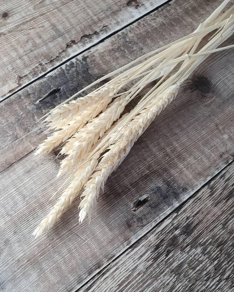 Hochzeit - MINI - Wheat Bunch - Off White