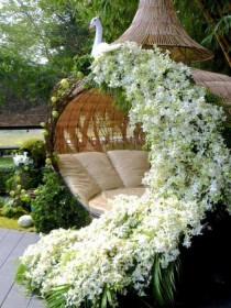 wedding photo -  Outdoor wedding Decoration