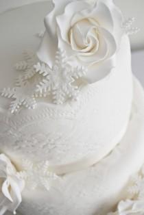 wedding photo - Snowflakes & Sparkle