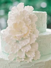 wedding photo - Mint Green Weddings