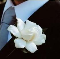 wedding photo - Un Gardenia simple