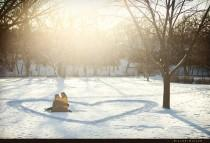 wedding photo - Engagement Winter