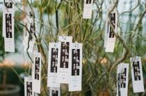wedding photo - Ботанический Мечта: дана & Уитакер В Фармингтон-Хиллз, Мичиган