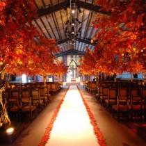 wedding photo - جميلة سقوط الزفاف