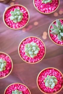 wedding photo - Hot Pink Rocks For Planting Succulents