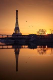 wedding photo - Tour Eiffel au lever de soleil