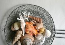 wedding photo - Essbare Schokoladen Gefüllte Candy Seashells 20 - ideal für Kuchen Dekorieren, Gift Giving, Bevorzugungen und Stand Alone