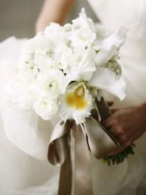 wedding photo - White Cattleya Orchids