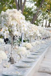 wedding photo - Orchids