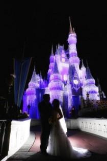 wedding photo - Disney ОП Фото - Ночной Замок