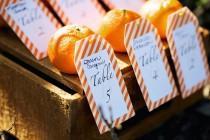 wedding photo - ::Orange Wedding::