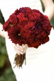 wedding photo - زفاف