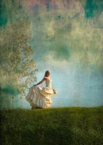 wedding photo - Fairy Tale Wedding