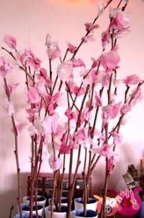 wedding photo - Cherry Blossom
