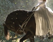wedding photo - Fairytale Weddings...