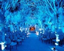 wedding photo - Winter Wedding