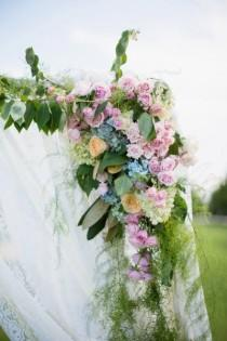 wedding photo - Сад Свадеб