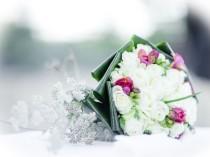 wedding photo - Зимняя свадьба Вдохновение