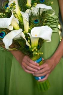 wedding photo - Pfau-Hochzeit