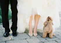 wedding photo - Weddings-Flower Girls-Ring Bearer