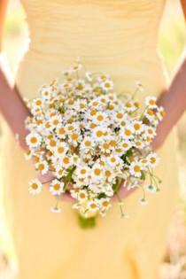 wedding photo - :: Yellow Weddings ::