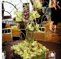 wedding photo - Mariage - Moderne