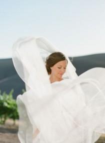 wedding photo - Veils