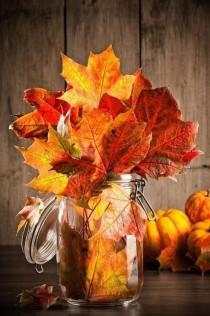 wedding photo - Wedding - Seasons - Autumn