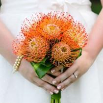 wedding photo - Destination Wedding: Hawaii