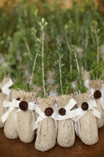 wedding photo - Winter Wedding Idea: Evergreens