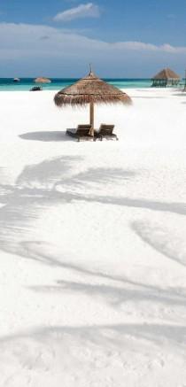 wedding photo - Travel - Maldives
