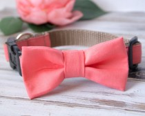wedding photo - Coral Dog Bow Tie With Options For Dog Collar, Dog Leash