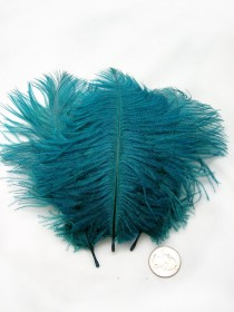 wedding photo - TEAL BLUE Ostrich Feather Drab (3 feathers) Pristine DIY ostrich feathers for wings, fascinators, wedding centerpieces, bouquets,millinery