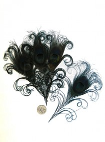 wedding photo - BLACK Curled Peacock Feather Eyes (6 piece, 2 size option) DIY feathers for wedding invitations, bouquets, center pieces, millinery