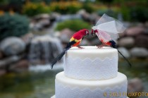 wedding photo - Tropical Parrot Cake Topper: Scarlet Macaw Bride and Groom Wedding Cake Topper