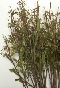 wedding photo - 10 Artificial Flower Stems with Plastic Leaves - NO RETURNS - DIY Wedding Bouquets, Flower Arrangements