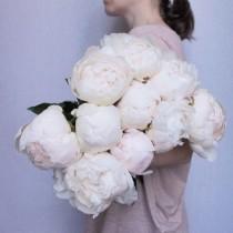 wedding photo - Color