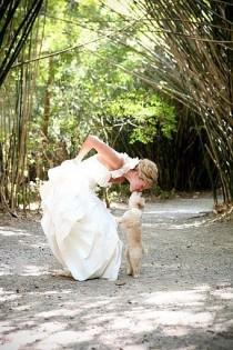 wedding photo - Unique Wedding Photography ♥ Cute Wedding Photography #803108