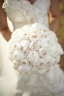wedding photo - Zebra Love - Ring