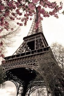 wedding photo - Paris Travel Guide And Mobile Apps – Guiddoo