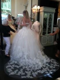 wedding photo - Vera Wang Vera Wang Lisbeth Iconic Collection Wedding Dress