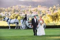 wedding photo - The Princess Carriage