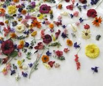 Centerpieces 9 weddbook for Dried flowers craft supplies